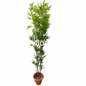 Image is a picture of an artificial green skinny plant in a pot.