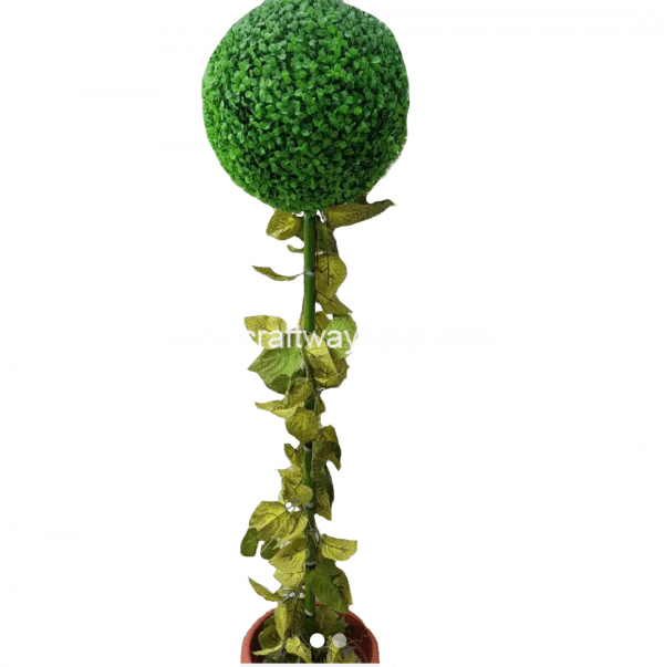 Image features a green round topiary grass ball in a pot.