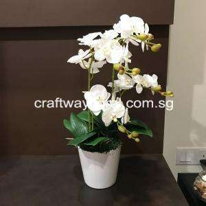 Artificial White Phalaenopsis Orchid Floral Arrangment.