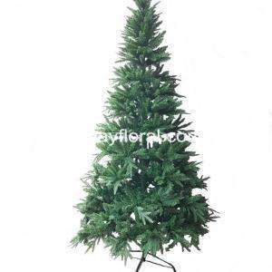 The Sanford Fir has short, soft needles that are a lustrous dark green on the upper surface and a lovely silvery blue. Needles generally are two-ranked and are spreading and uncrowded on the branch.