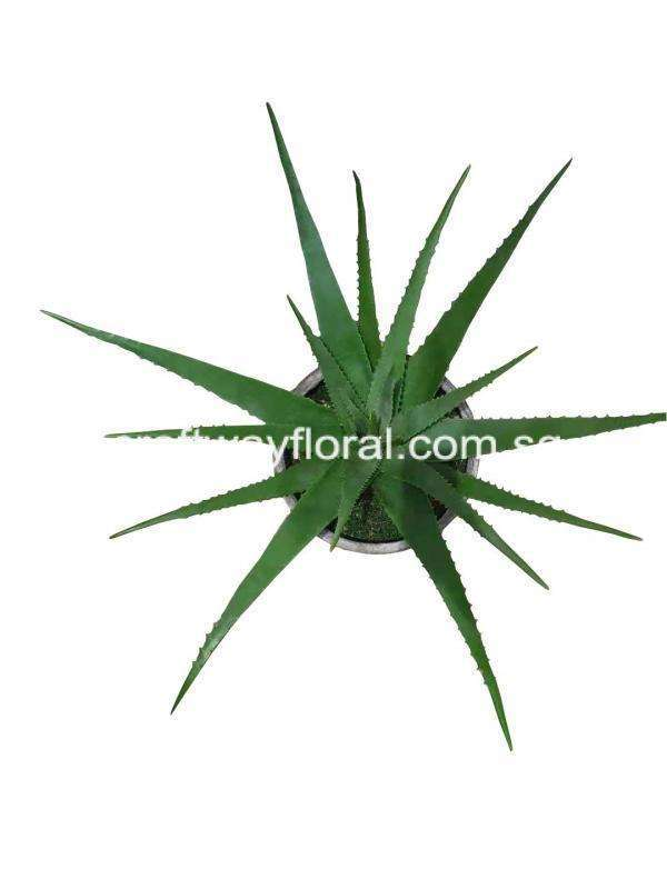 Artificial High quality realistic aloe vera from top view