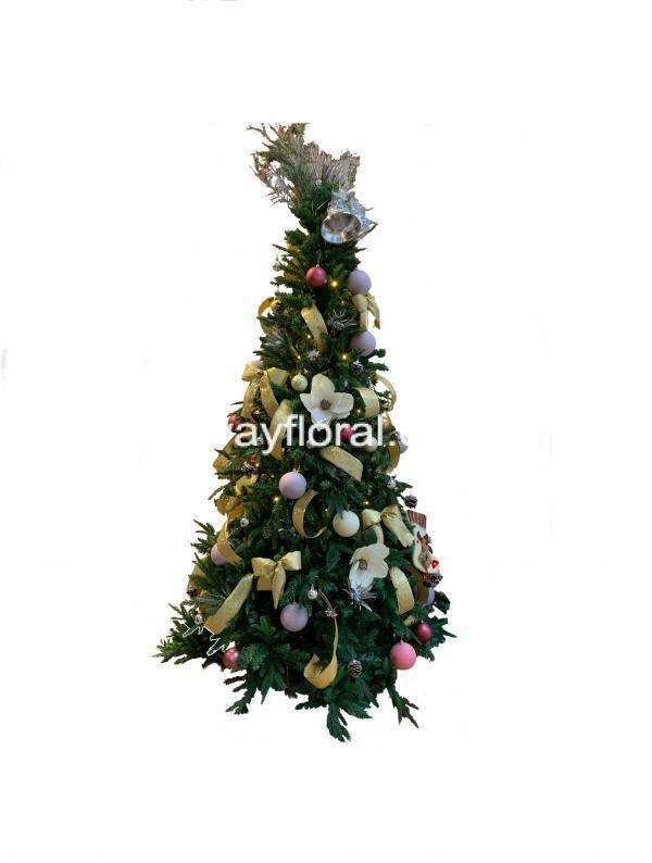 Maroon/Gold 8Ft/2.4m Sanford Fir