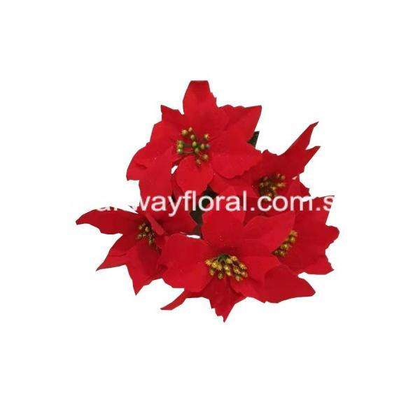 Poinsettias are the ultimate Christmas decoration.They are commonly known as the Christmas Star and Christmas Flower and are usually associated with Christmas and are widely used as Christmas floral displays and popular seasonal decorations. Brightly colored and mostly red, a Poinsettia brings off impressive color in home decor during and after the holiday season.