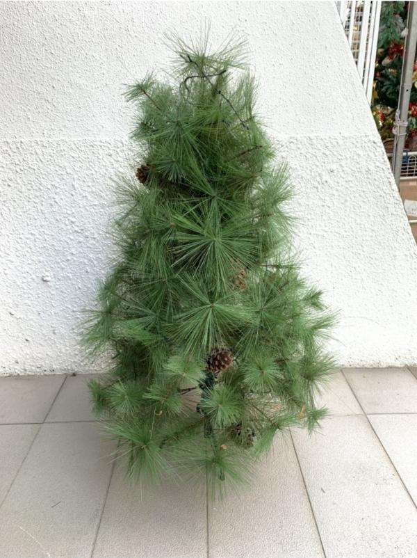 Also referred to as the scots pine, this pine tree is another common Christmas tree option. Dark green foliage and sturdy branches equip the scotch pine: perfect for plenty of Christmas lights and decorations. The needles are in darker green and grow in fascicles or bunches of two.